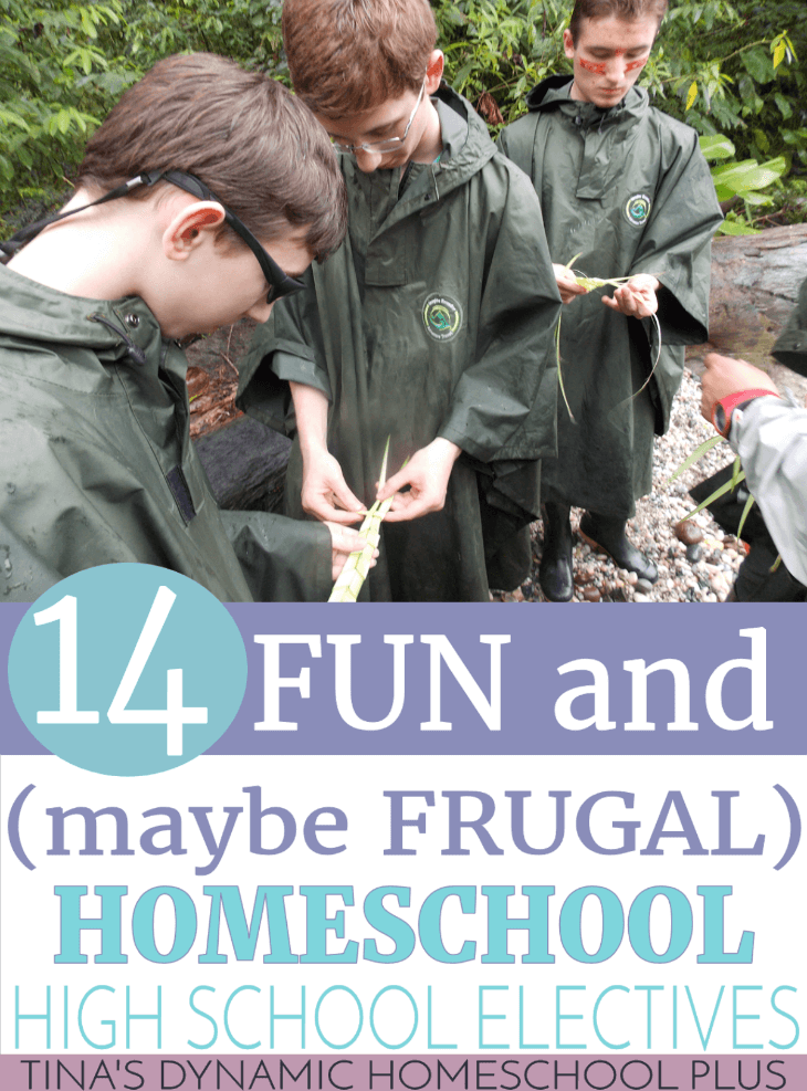 14 Fun (and maybe Frugal) Homeschool High School Electives @ Tina's Dynamic Homeschool Plus