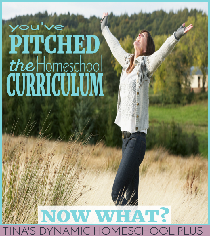 You've Pitched the Homeschool Curriculum - Now What? What if you make the same costly mistakes? Check out these super helpful tips and reminders.