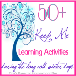50 Keep me Homeschooling Activities During the Long, Cold, Winter Days | Tina's Dynamic Homeschool Plus