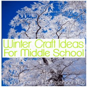 Winter Craft Ideas for Middle School | Tina's Dynamic Homeschool Plus