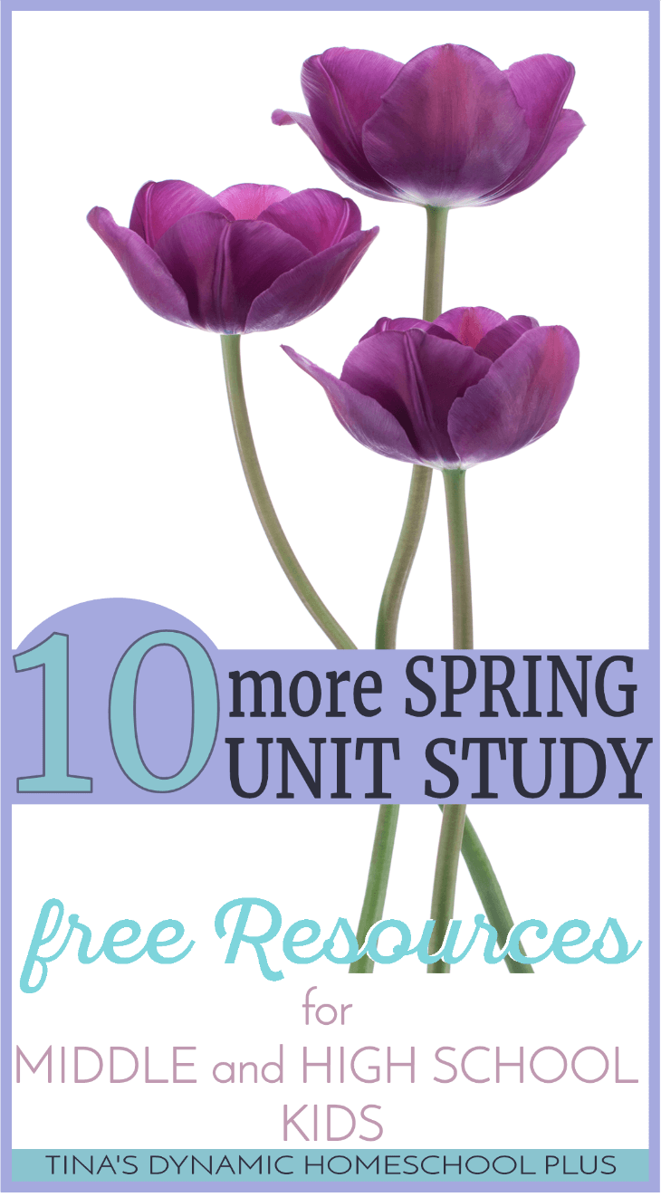 10 More Spring Study Free Resources for Middle and High School Kids. Grab these free awesome downloads and hands-on ideas to keep your older kids learning. I think your younger kid could join in too. Click here to grab the resources! @ Tina's Dynamic Homeschool Plus