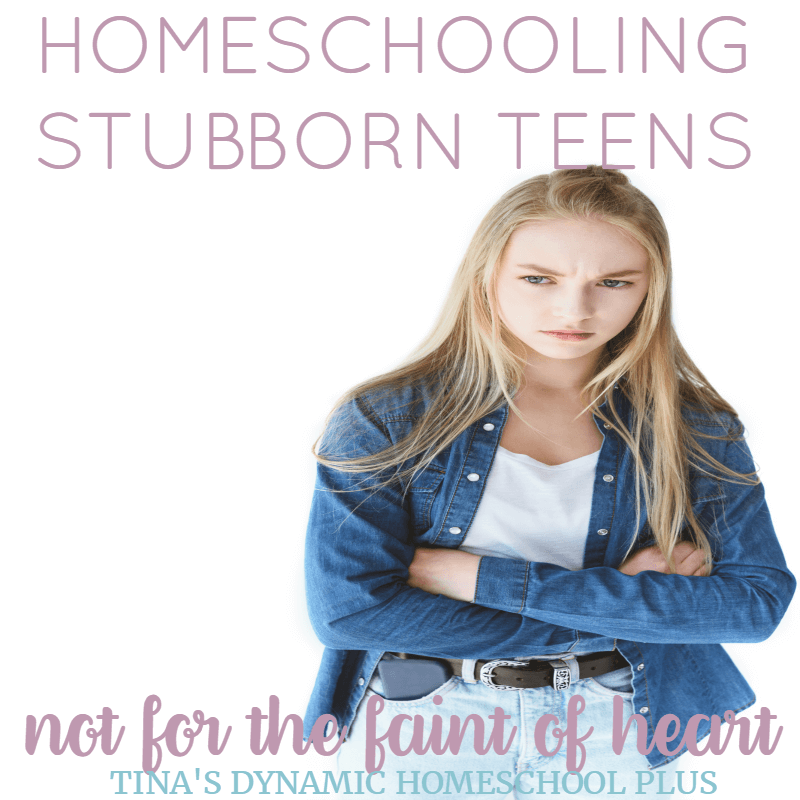 I've learned that although it's easier to blame my teens for everything that went wrong, I too had to learn how to parent differently. As each of my sons reached the teen years, I've had to become more resourceful and creative in how I homeschool them. Click here to grab these SUPER helpful tips!