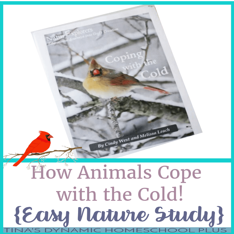 Winter is a wonderful season for learning about animals with kids. Animals go through so many different behavioral changes to adapt to cold temperatures and, when you can study those changes in your own backyard, it really makes scientific concepts come alive. Click here to grab this easy nature study!