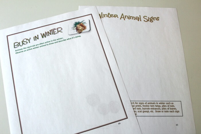 Nature Explorers Winter Animals Notebooking Pages