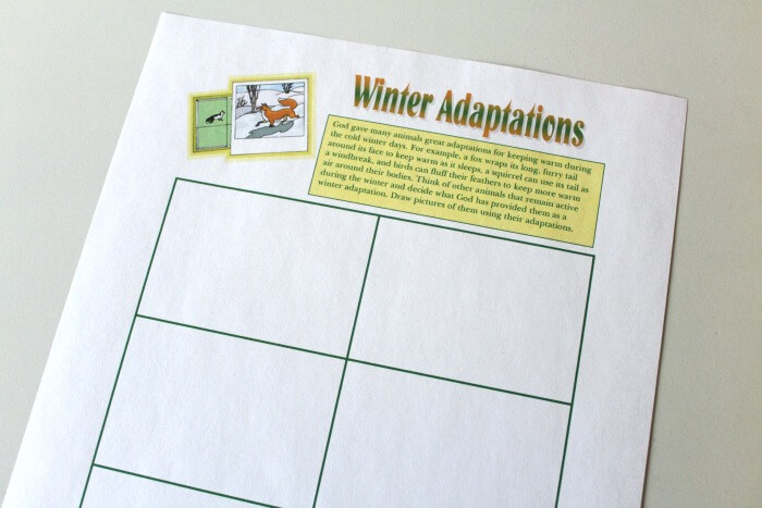 Winter Adaptations Art Activity