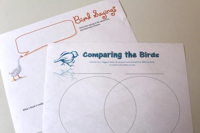 Comparing Local Birds