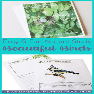 Easy and Fun Nature Study: Beautiful Birds