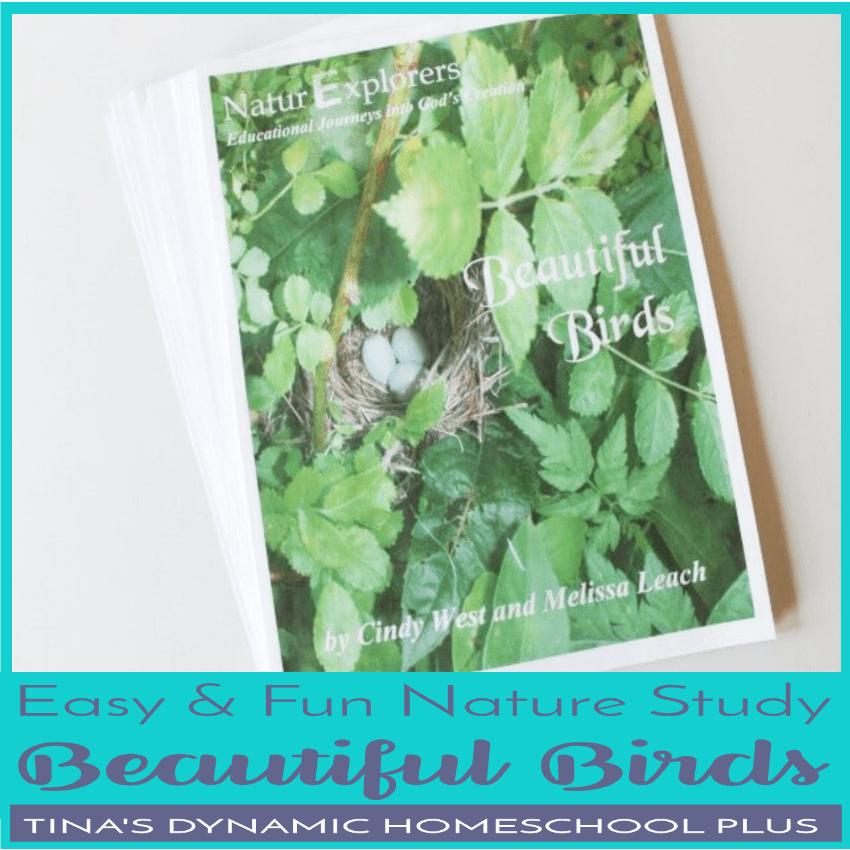 Beautiful Birds is truly a beautiful nature study unit for spring! Click here to grab this easy and fun nature study about birds!