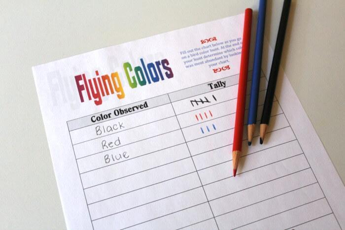 Flying Colors Bird Spotting Activity