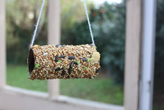 Simple DIY Birdseed Feeder