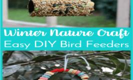 Winter Nature Craft: How to Make Easy DIY Bird Feeders
