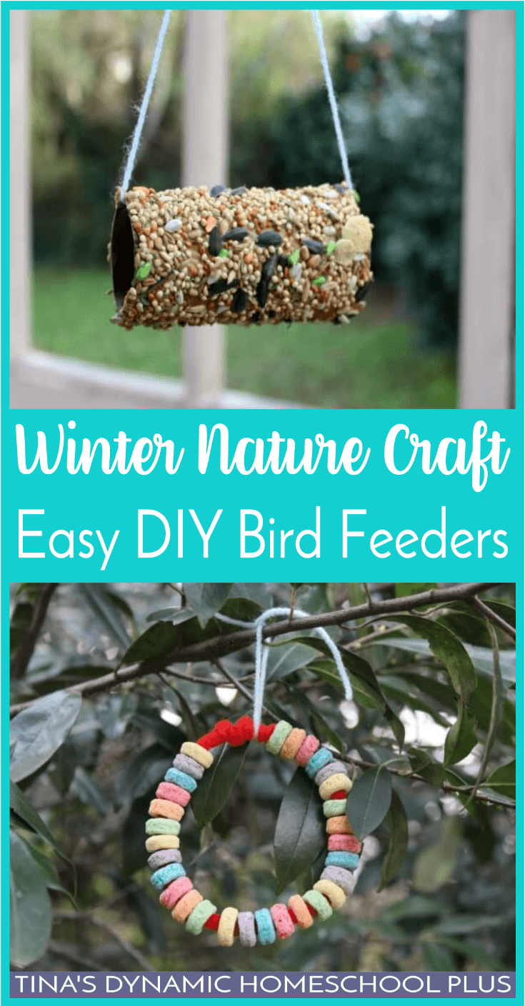 Making easy DIY Bird Feeders is a fun winter nature craft to do with the kids. Add this easy hands-on nature craft to your homeschool unit study. Click here to see how to make it!