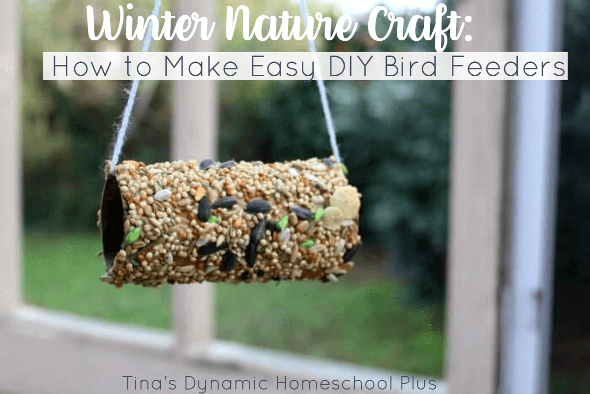 Nature craft how to make easy diy bird feeders for What craft should i do