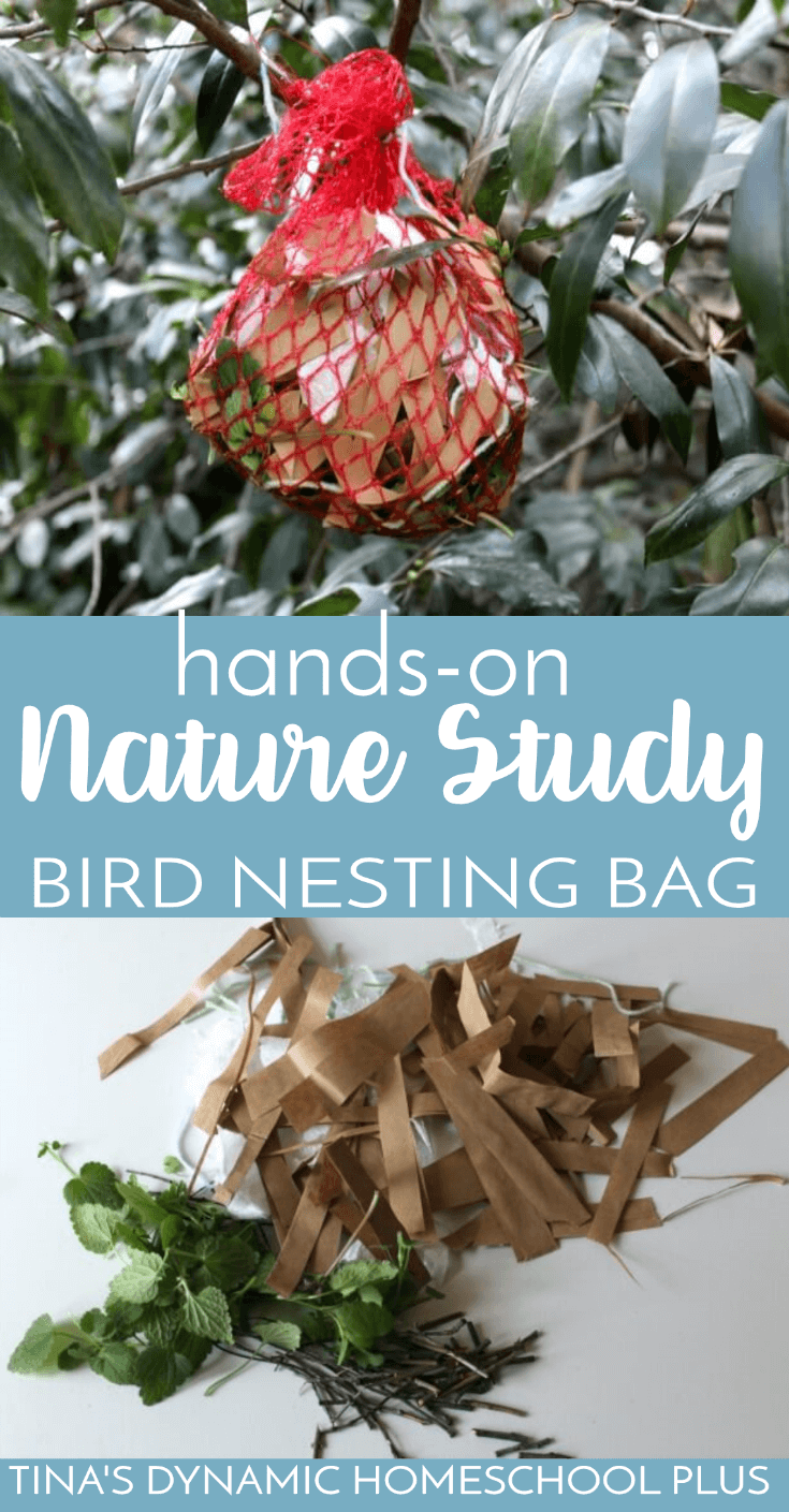 Hands-On Nature Study: Make a Fun Bird Nesting Bag