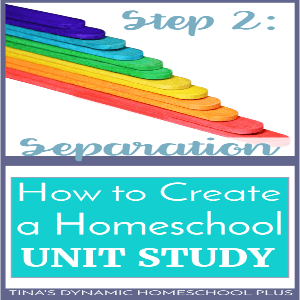 How to Create a Homeschool Unit Study – Step 2: Separation