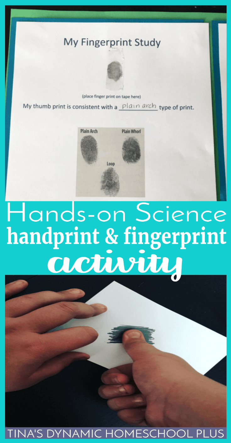 Hands-On Science: Handprint and Fingerprint Activity. What better way to celebrate the uniqueness of our skin than to learn more about our unique fingerprints and palm prints? CLICK HERE to grab the free printable and do this fun hands-on activity!
