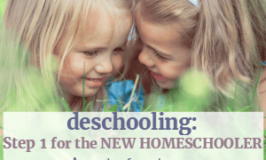 Deschooling: Step One for the New Homeschooler (the Definitions, the Dangers, and the Delight)
