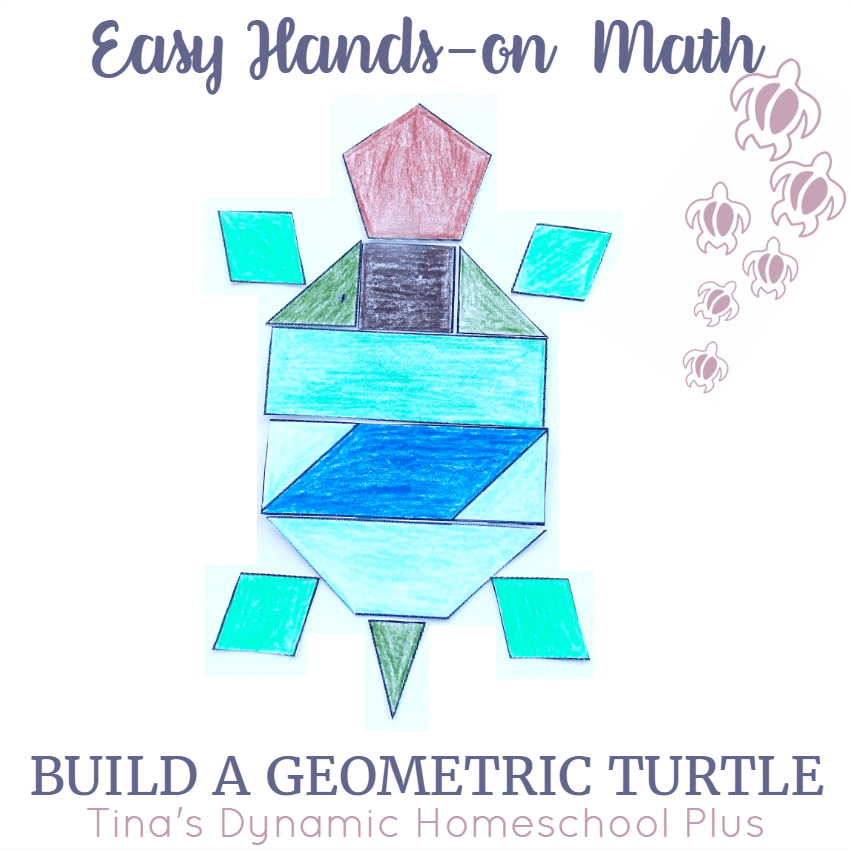 Easy Hands-on Math Build a Geometric Turtle @ Tina's Dynamic Homeschool Plus