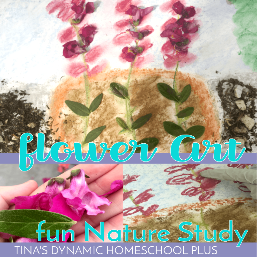 Picking out a few inexpensive flowering plants, adding in some gardening activities and art, and you'll have a fun hands-on mixed media flower art fun nature study! Check out how easy it is to do this fun hands-on nature activity!