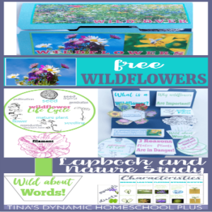 Wildflowers Unit Study & Lapbook (The Nature Book Club Link Up 5)
