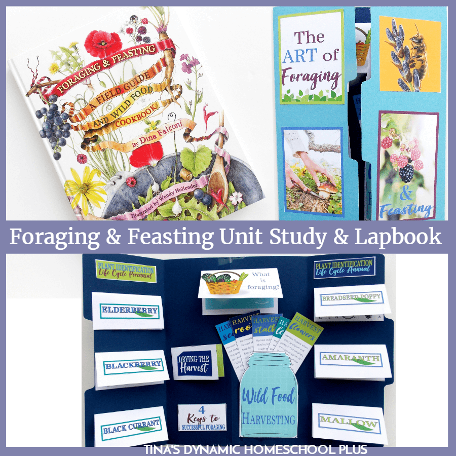 This foraging and feasting nature unit study is not only a way to teach some basic survival skills like learning how to live off the land, but a great way to sneak in tips about how to cook. CLICK HERE to grab this FREE Foraging and Feasting Lapbook and unit study resources!