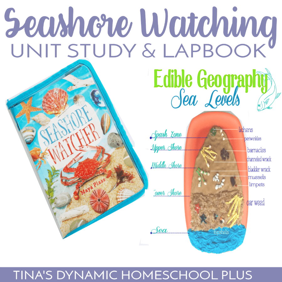 Super Seashore Watching Unit Study and Beach Lapbook. Whether you want to study the beach or seashore in the summer or winter, your kids will love this free super seashore watching unit study and free beach lapbook along with hands-on activities! CLICK HERE to grab it!