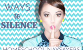 100 Ways to Silence the Homeschool Naysayers (Maybe!)