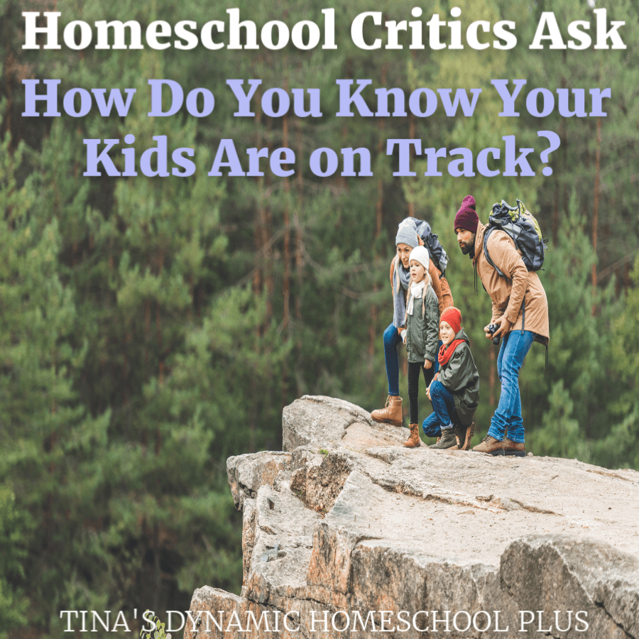 Homeschool Critics: How Do You Know You're on Track?