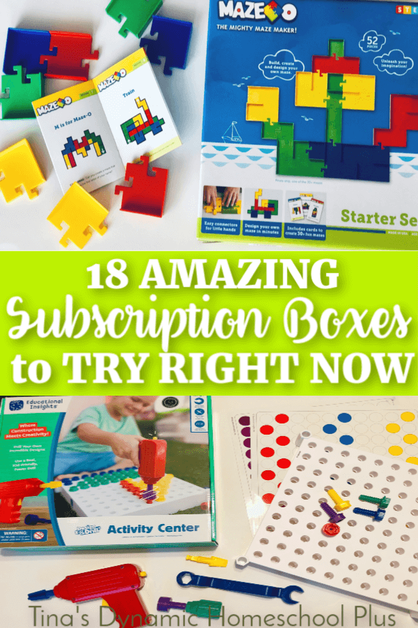 18 Amazing Subscription Boxes to Try RIGHT Now. Your kids will love these AWESOME and fun projects they get in the mail. Check them out at Tina's Dynamic Homeschool Plus