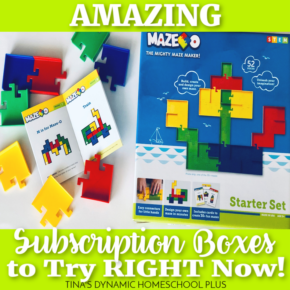 18 Amazing Subscription Boxes to Try RIGHT Now @ Tina's Dynamic Homeschool Plus