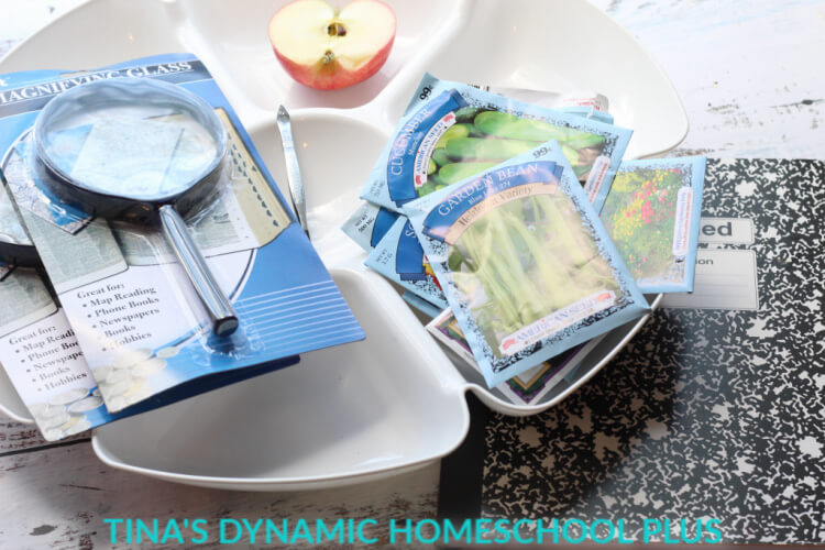 3 supplies for seed investigation Easy Seed and Gardening Unit Study for Kids Middle - Upper Elementary @ Tina's Dynamic Homeschool Plus