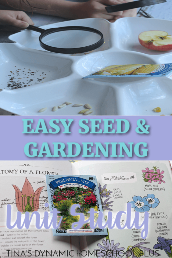 Easy Seed and Gardening Unit Study for Kids (Middle - Upper Elementary). You'll love these tips for an easy gardening unit study! Click here to grab them!