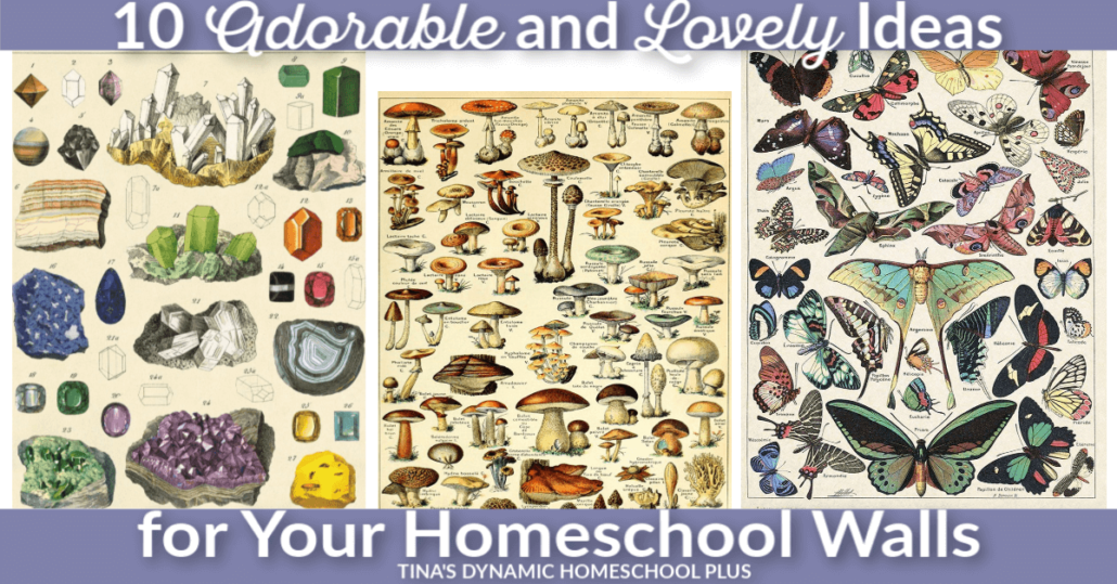 10 Adorable and Lovely Ideas for Your Homeschool Walls