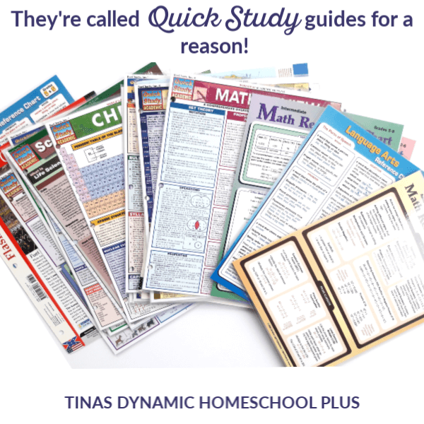How to Easily Add Language Arts to Homeschool Unit Studies (& Resources)