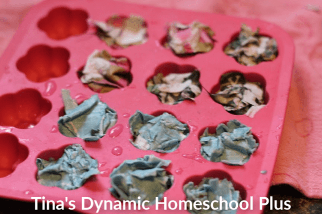 Fun Kids Activity How to Make Wildflower Seed Bombs 7 at Tina's Dynamic Homeschool Plus