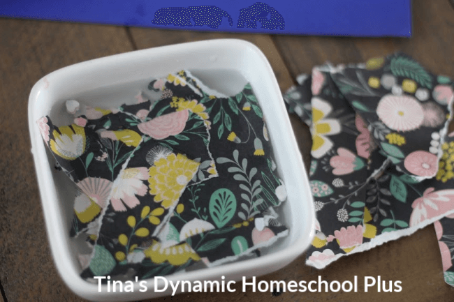 Fun Kids Activity How to Make Wildflower Seed Bombs at Tina's Dynamic Homeschool Plus 4