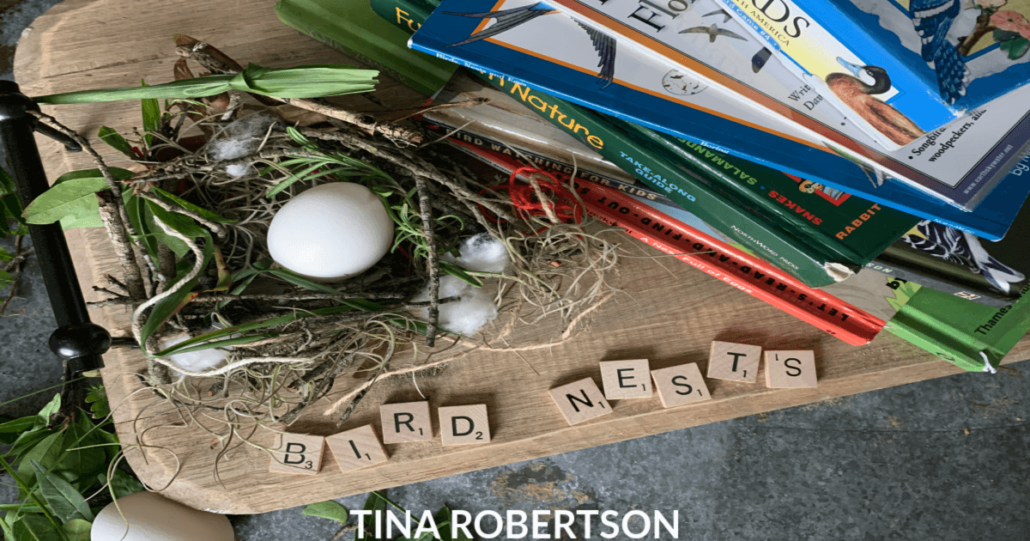 How to Make a Kid's Fun and Easy Bird Nest Activity