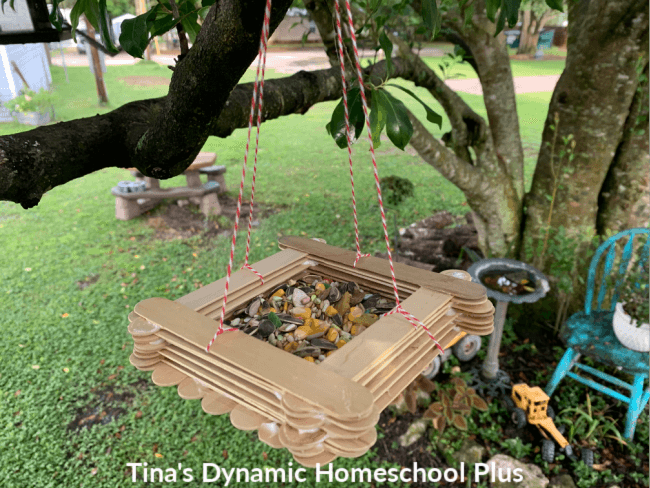 How to Make an Easy Jumbo Stick Bird Feeder with Kids