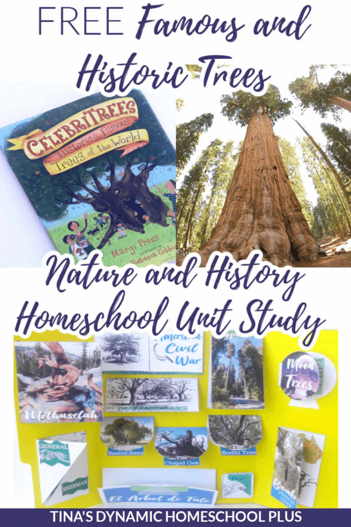 Famous and Historic Trees Fun Nature and History Homeschool Unit Study