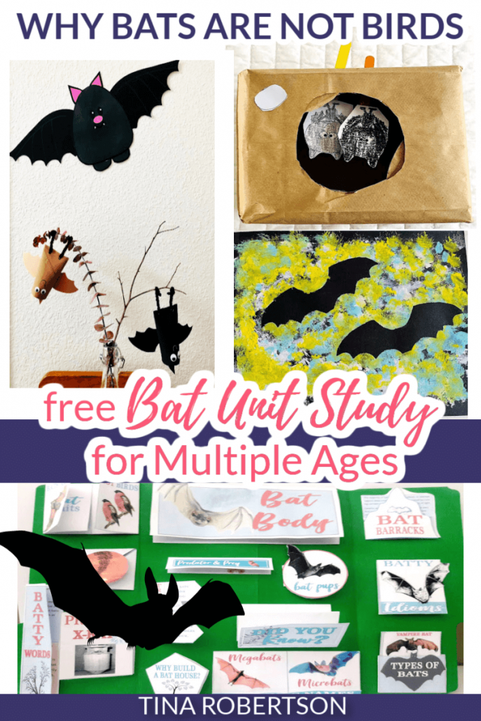 Why Bats Are Not Birds Fun Homeschool Unit Study and Lapbook