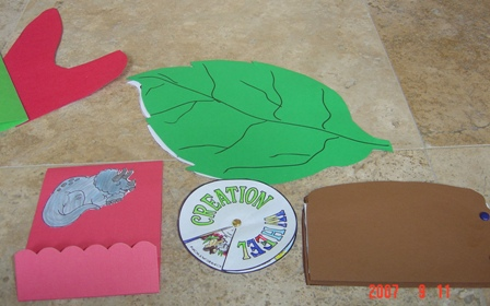Toads and Amphibians Unit Study and Lapbook
