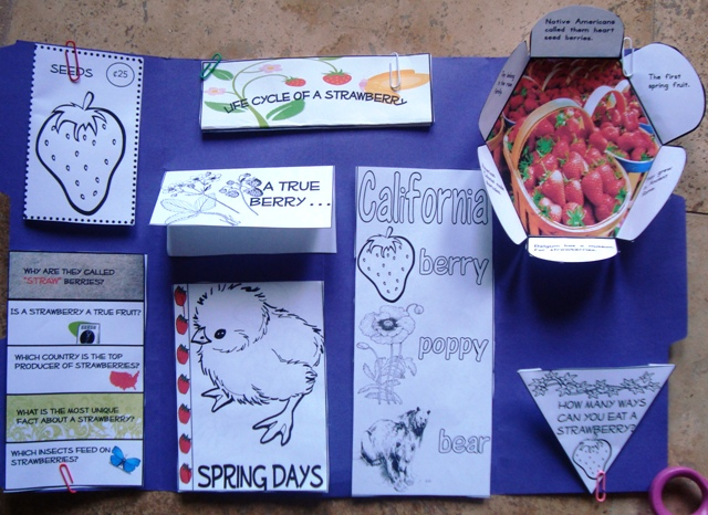 Strawberry Lapbook @ Tina's Dynamic Homeschool Plus
